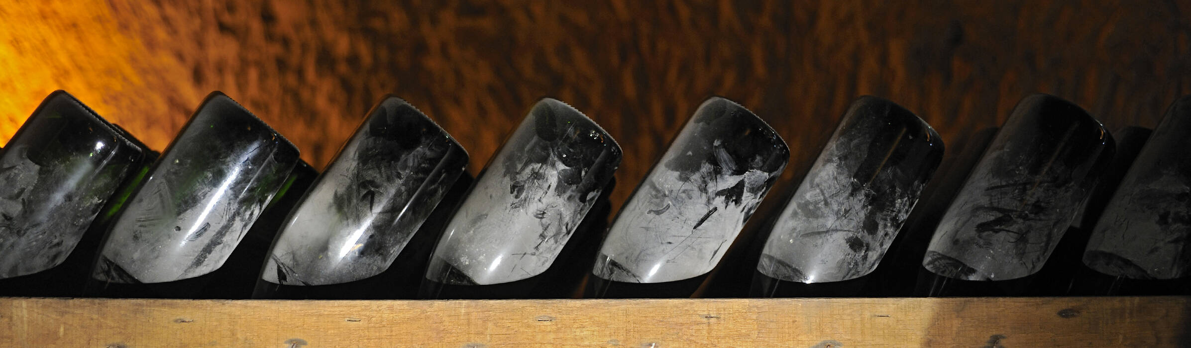Veuve Clicquot - From vine to wine